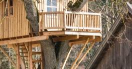 Großes Baumhaus benötigt einen Statiker