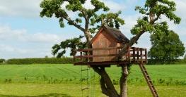 Welche Größe und Welche Höhe sollte ein Baumhaus haben ?
