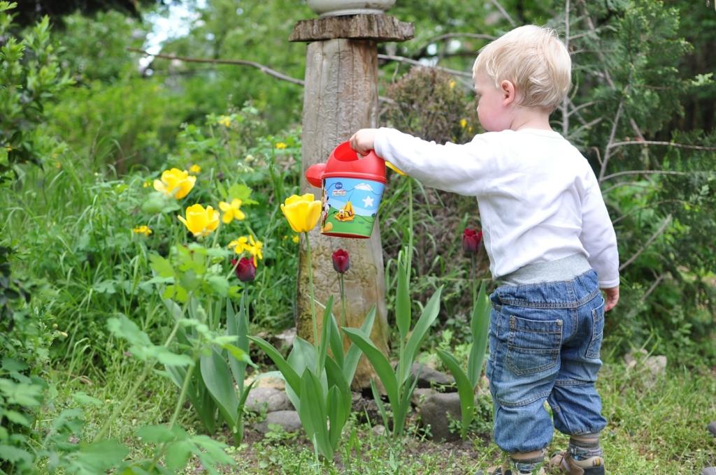 Kind gießt Pflanzen im Hochbeet