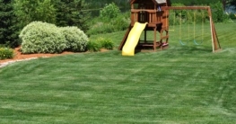 Rasen Spielplatz