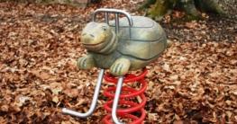 Wipptier Schildkröte